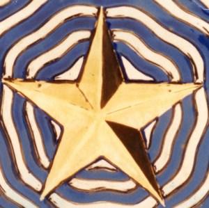Odsherred gylden stjerne Foto 11802