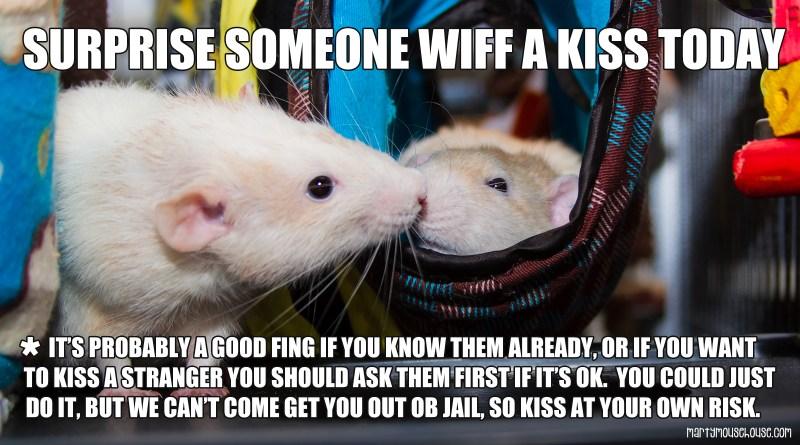 Gib a Kiss