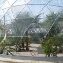 Inspiratie voor de cactus tuin in de dome.