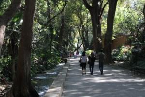 Chapultepec cuerna2