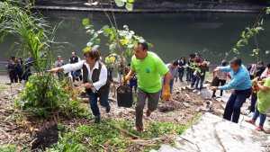 refoerestacion barranca chapultepec