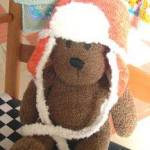 Bears in Hats - 1