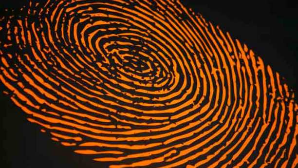 fingerprinting for new florida massage therapy law