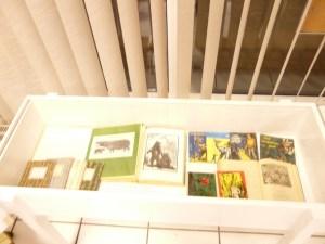 Vernissage Wittdorf GBM-Galerie 22.2.2013 008-WEB