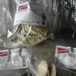 Kambly Kekse!