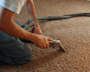 CUS8_Amde-Partners-Carpet-cleaning-services-Edinburgh-carpet_2