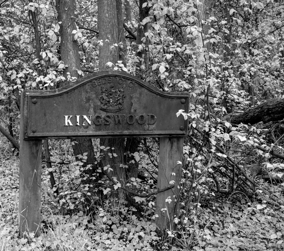 The Kingswood in spring.