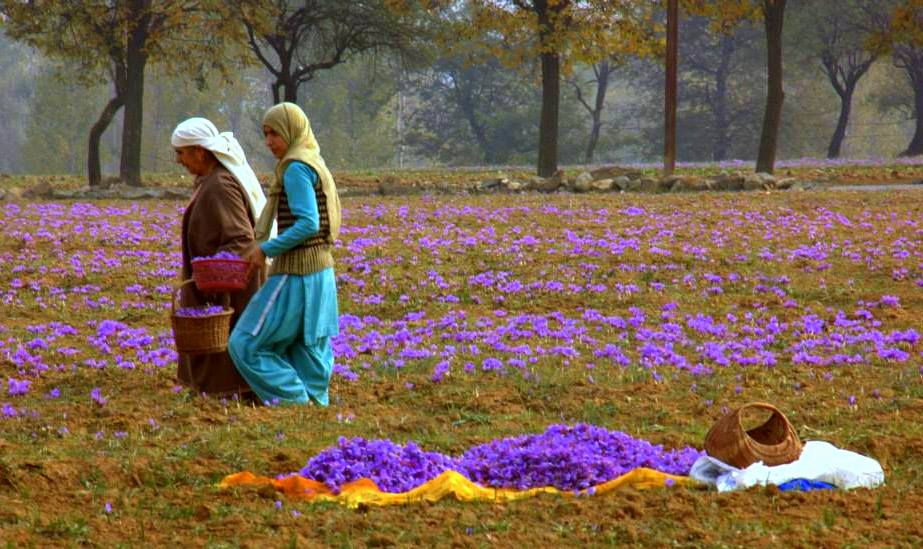 21 photos that may tempt you to visit Kashmir
