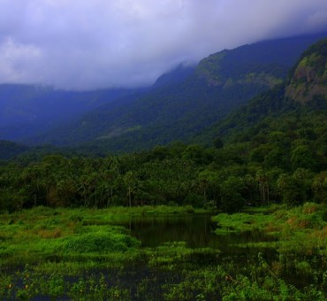 Palghat and beyond