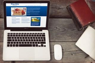 Blue Chip Group Website