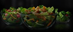 Flossy Salads Freshly Prepared Salads Mcdonald S Southwest Salad Review Mcdonald S Southwest Salad Grilled Calories Get Your Greens Our Freshly Prepared Saladscrisp Full