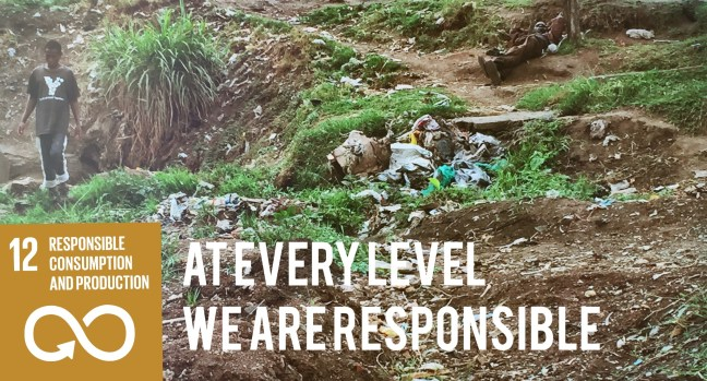 Ensure sustainable consumption and production