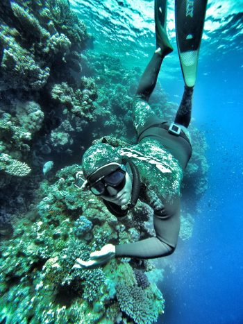 Freediving Tours & Camps