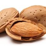 Jual Kacang Almond Murah