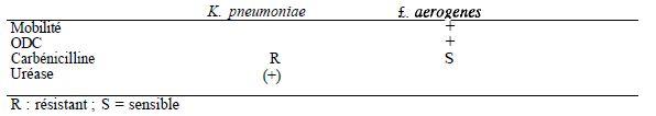 TABLEAU III : caractères différentiels de K. Pneumoniae et de E. Aerogenes