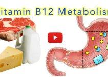 Vitamin-B12-Metabolism-Video-Tutorial-Made-Easy-Medical-Institution
