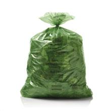 sac_vert