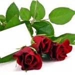 descargar palabras de amor para mi novia, nuevas palabras de amor para mi  novia