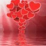 Nuevas palabras para poema de amor, las mejores palabras para poema de amor