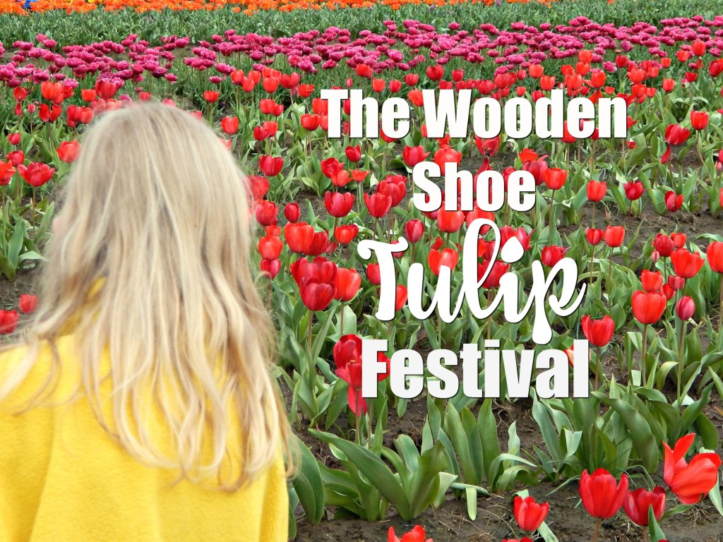 woodburn-tulip-festival-27-hero