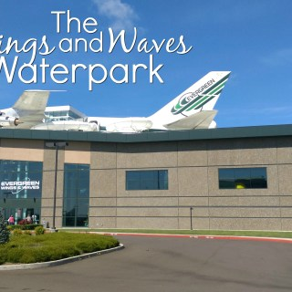 Living Locally: The Wings and Waves Waterpark
