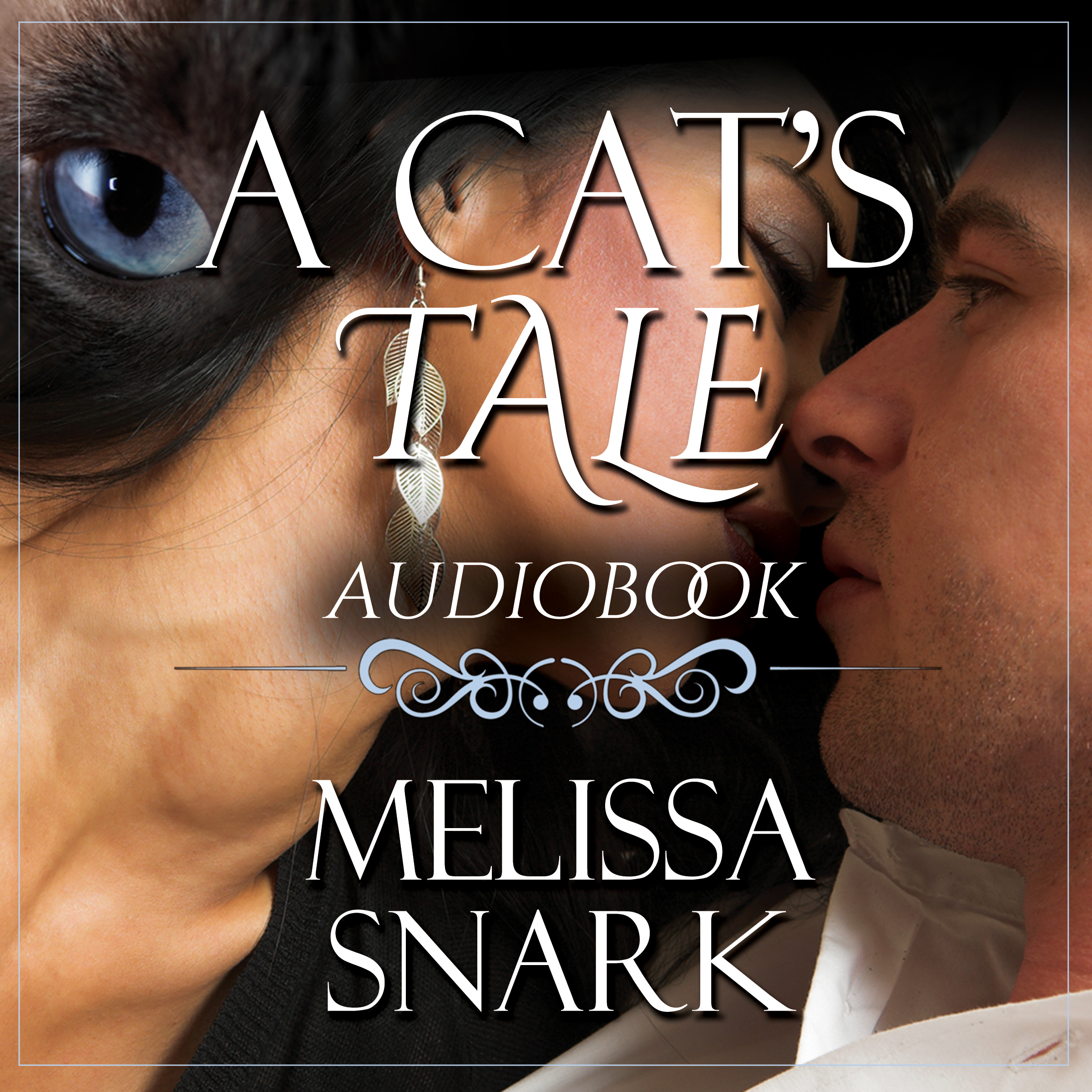 A cat's tale acx cover front