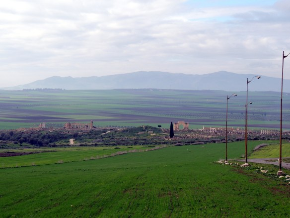 Looking across the rich agricultural valley that also holds the ancient Roman ruins of Volubilis