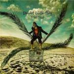 Crossover Prog from Israeli Guitarist – Yossi Sassi – Desert Butterflies!