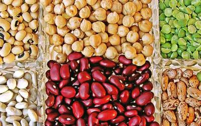 Alimentos eficaces para reducir el colesterol.