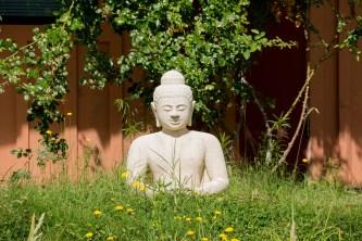 Calm, Rigdzin Ling, Junction City, CA, 2015