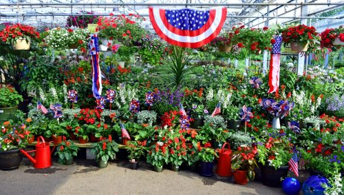 Medium Of Merrifield Garden Center