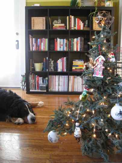 Cody, tired after decorating the Christmas tree.