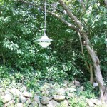 Pretty CB2 bird feeder in the backyard!