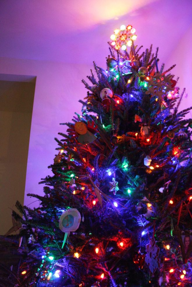 Christmas Tree, 2013.
