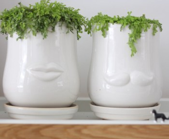 Inexpensive head planters from JoAnn.