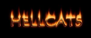 hellcats logo Hellcats