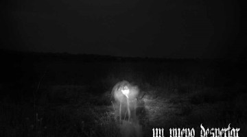 review-ariday-despertar