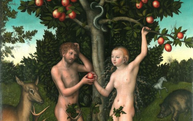 Garden of Eden5