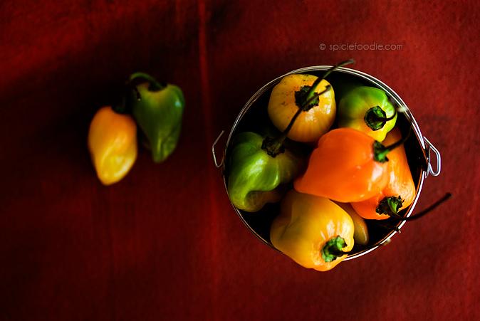 Charred Habanero-Garlic and Cilantro Salsa | #salsa #habaneros #Mexican #tacos