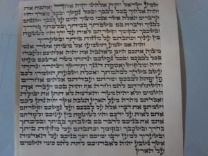Mezuzah 15 cm Beis Yosef Written By Rabbi Yaakov Shapiro $120