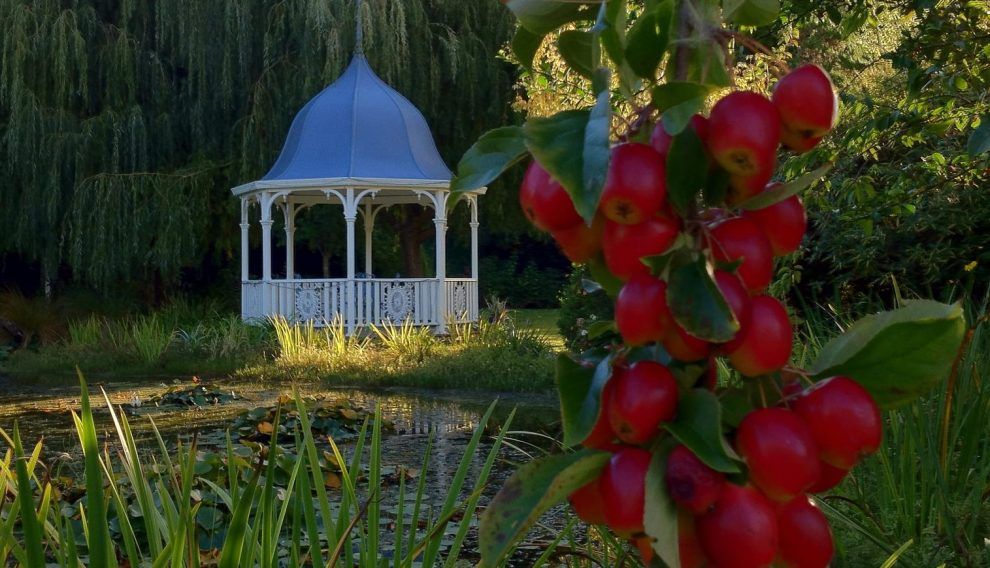 The Apple Tree and the Gazebo
