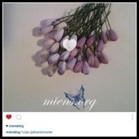Kom igång med Instagram - Del 4