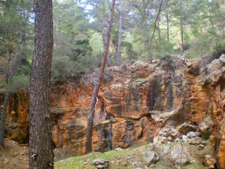 An old chromite pit in the pine forest, Turkey. See also the featured image.