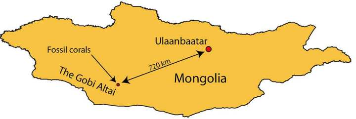 The Gobi Altai mountains are in the south west of Mongolia. The locality described here is about 720 km from the capital, Ulaanbaatar.