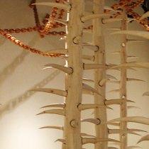 2010Schneider_Museum_of_Art