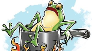 How to Slow Boil a Frog