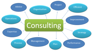 Business Consultants 14