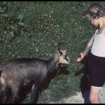 Hitler's tame chamois with huntsman's daughter in Berchtesgaden.