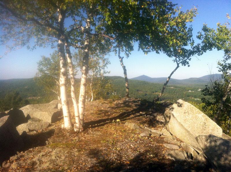 Recent Trail Work: Vistas