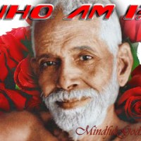 Who am I? – Talk 146 with Sri Ramana Maharshi